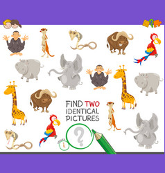 find two identical animals game for kids vector image