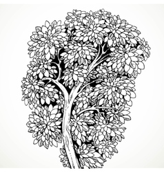 Graphically drawing tree isolated on white vector
