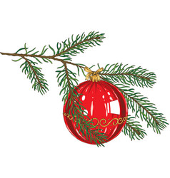 green fir branch with red glass bauble vector image