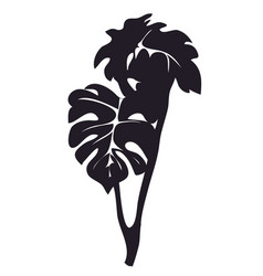 house plant on a branch silhouette vector image