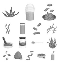 Isolated object plant and weed sign collection vector