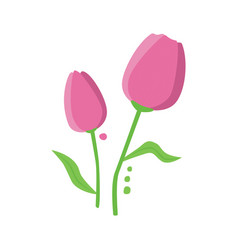 Pink tulip with leaves vector