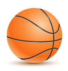 Realistic Basketball vector image
