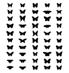 silhouettes butterflies vector image