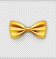 stylish gold bow tie from satin vector image