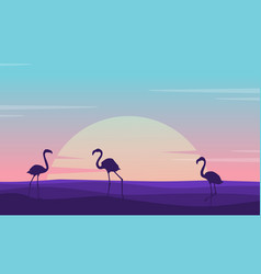 At sunrise flamingo lined on the hill scenery vector
