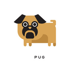 cartoon brown pug puppy with short-muzzled face vector image