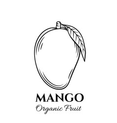 hand drawn mango icon vector image