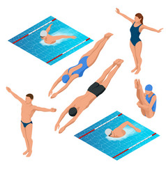 isometric swimming pool swimmers human characters vector image
