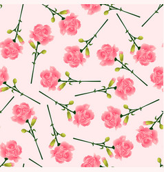 pink carnation flower on pink background vector image
