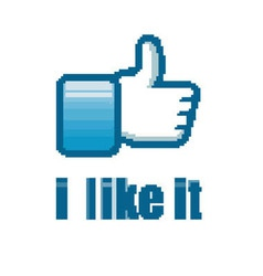 Social Network like it hand button vector image