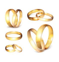 stock realistic gold wedding vector image