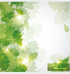 abstract shiny background with green oak leaves vector image vector image