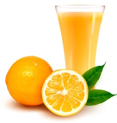 Fresh orange and glass with juice vector