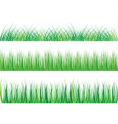 collection of green grass isolated on white vector image vector image