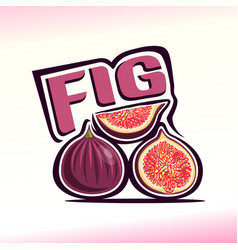 fig still life vector image