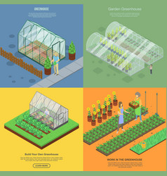 Greenhouse banner set isometric style vector