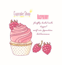 Hand drawn cupcake raspberry flavor vector
