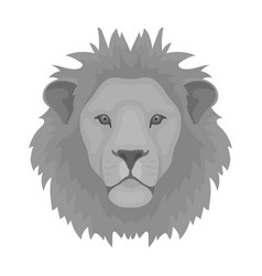 lion icon in monochrome style isolated on white vector image