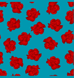 red carnation flower on blue background vector image