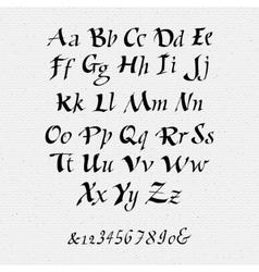 Ruling pen script lettering font handwritten vector image
