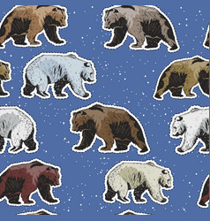 seamless pattern with polar and brown bears vector image