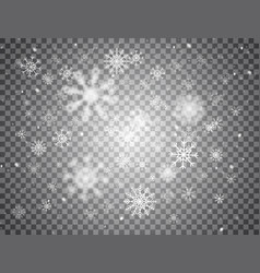Snowflakes falling on transparent background vector