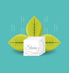 Stevia natural sweetener with leaves vector