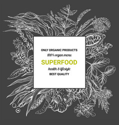 superfood square bannersketch vector image