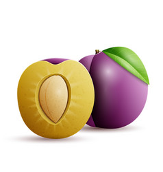 Whole and half plum vector
