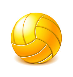 yellow water polo ball isolated on white vector image vector image