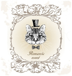 beautiful cat card in vintage vector image vector image