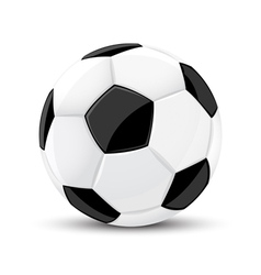 soccer game ball isolated vector image vector image