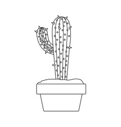 monochrome silhouette with cactus with big branch vector image vector image