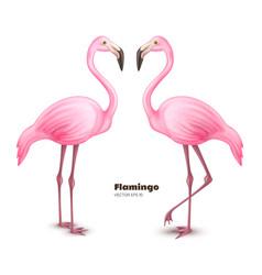realistic 3d pink flamingo set vector image vector image