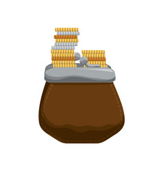 cute pruse with coins cash money vector image