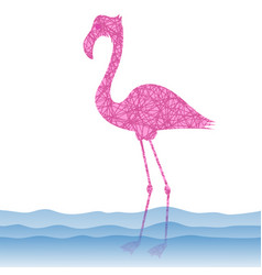 Pink flamingo bird vector