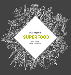 superfood rhombus banner sketch iilutstration vector image