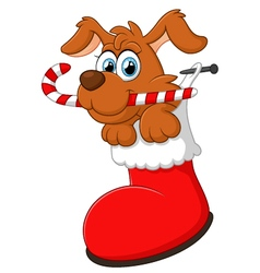 cartoon dog christmas vector image