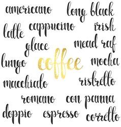 Set names of species coffee in calligraphy vector image