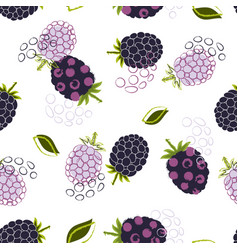 abstract pattern with blackberry vector image