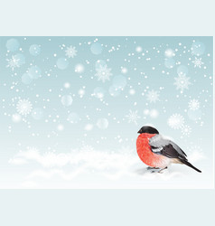 Christmas bullfinch background vector image