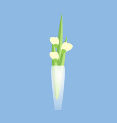 Flower in transparent vase home restaurant decor vector