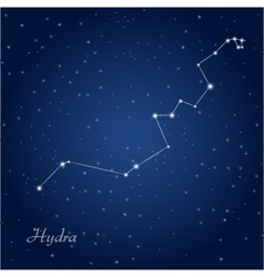 Hydra constellation vector image