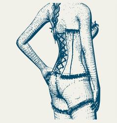 Underwear fashion concept vector