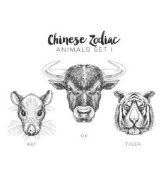 set of hand drawn animal vector image vector image