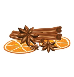 Cinnamon anise and orange on a white background vector