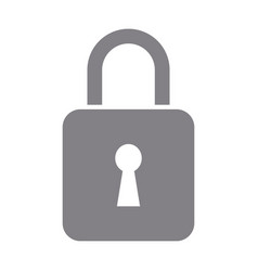 padlock security data protection privacy vector image vector image