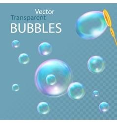 Realistic soap bubbles vector image