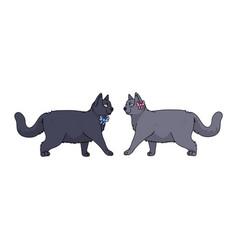 Cute cartoon british shorthair boy and girl cat vector